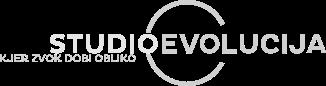 Studio Evolucija - kjer zvok dobi obliko